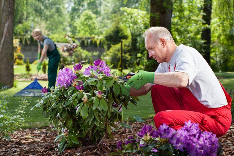 нанять семейную пару в загородный дом, помощники по хозяйству с проживанием и без